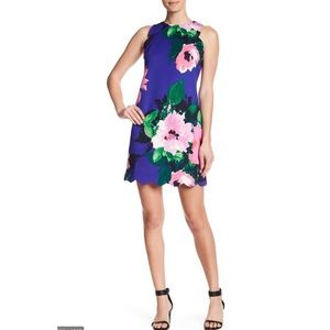 Vince Camuto Scalloped Floral Dress Sz 6